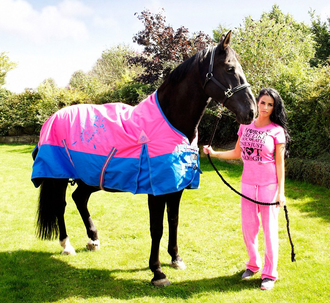 Kp Equestrian Meaning Horses In A