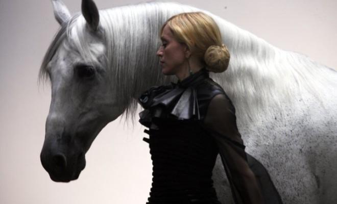 HORSE-by-Klein-madonna-12353212-720-479-